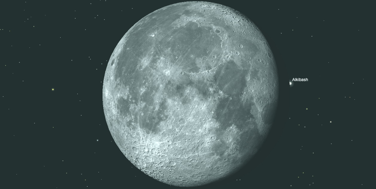 Twilight is starting to brighten the sky in readiness for the reappearance of λ Geminorum (Alkibash) close to 6:56am for an observer in the central British Isles. The star flashes into view at the Moon's dark limb just north of the prominent circular Mare Crisium. Image credit: Ade Ashford/Sky Safari Pro