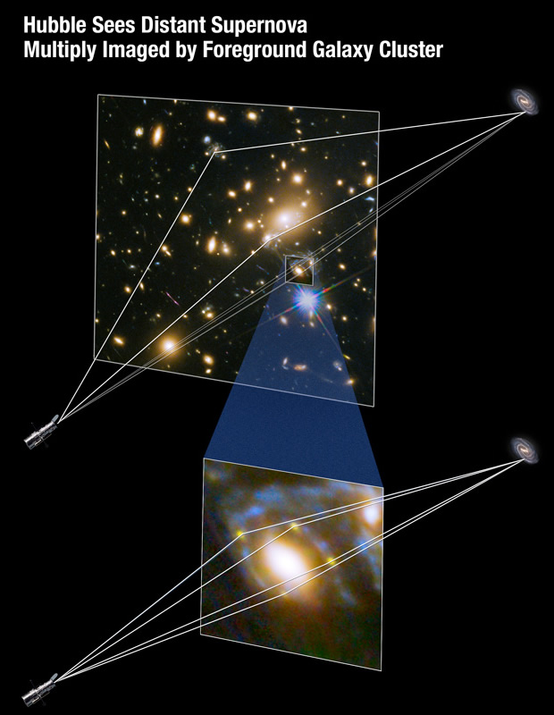 Illustration showing how the powerful gravity of a massive galaxy cluster bends and focuses the light from a supernova behind it – gravitational lensing – resulting in multiple images of the exploding star, an Einstein Cross. Image credit: NASA, ESA and A. Feild/STScI