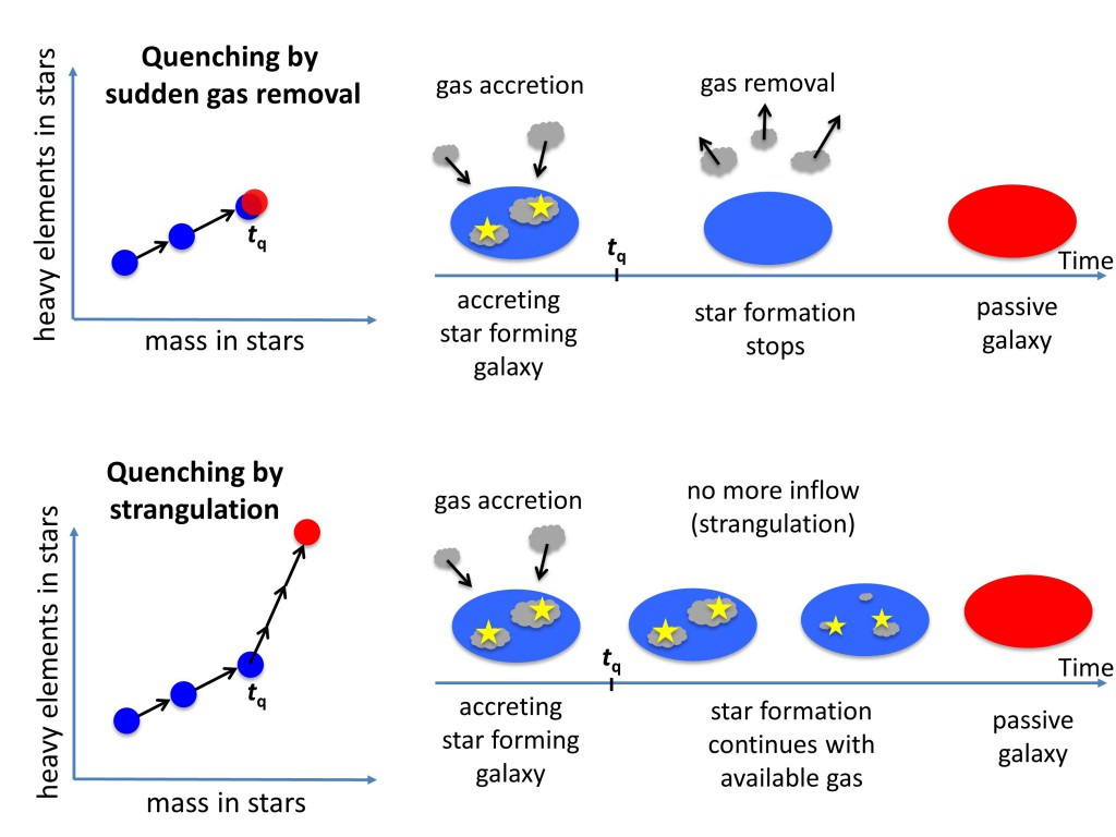 Illustration of two different star formation quenching scenarios. In the top panel, gas is suddenly removed by powerful outflows or stripping. In the bottom panel, the supply of gas is halted in a scenario known as `strangulation'. Credit: Roberto Maiolino and Yingjie Peng.