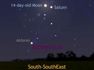 Late in to the evening of Monday, June1st, the 14-day-old and nearly full Moon forms an unequivocal guide to ringed planet Saturn as the pair will lie just 1.7° (the width of a thumb held at arm's length) apart. AN graphic by AdeAshford.