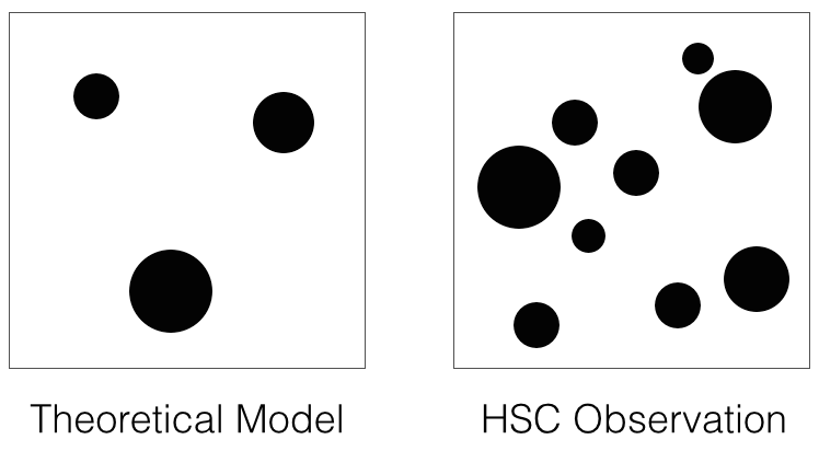 The data show a clear excess of dark matter concentrations over the current best theoretical model. Right: A schematic showing the dark matter concentrations discovered in the Hyper Suprime-Cam data. Left: A schematic showing predictions from current theoretical models. Image credit: NAOJ/HSC Project.