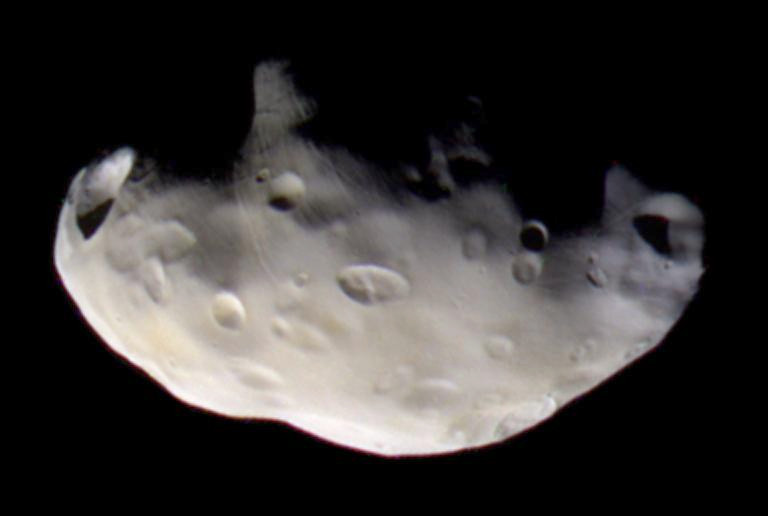 While inner shepherd moon Prometheus contributes to the confinement of Saturn's narrow F Ring, outer shepherd moon Pandora plays a lesser role. NASA's Cassini spacecraft acquired infrared, green and ultraviolet images of Pandora at a distance of approximately 52,000 kilometres (32,000 miles) on 5 September 2005, which were combined to create this false-colour view. Pandora measures 104×81×64 kilometres (65 x 50 x 40 miles). Image credit: PD-USGOV-NASA.