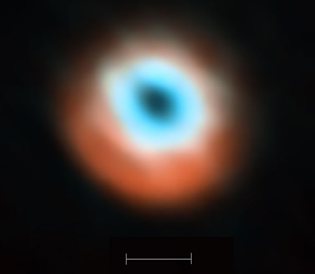 This ALMA image combines a view of the dust around the young star HD 135344B (orange) with a view of the gaseous material (blue). The smaller hole in the inner gas is a telltale sign of the presence of a young planet clearing the disc. The bar at the bottom of the image indicates the diameter of the orbit of Neptune in the solar system (60 astronomical units). Image credit: ALMA (ESO/NOAJ/NRAO).