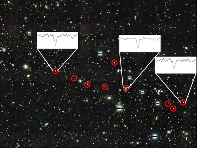 This is an image of dwarf galaxy Reticulum II obtained by the Dark Energy Survey, using the Blanco 4-metre telescope at Cerro Tololo Inter-American Observatory. The nine stars described in the paper are circled in red. The insets show the very strong presence of barium, one of the main neutron capture elements the team observed, in three stars. Image credits: Dark Energy Survey/Fermilab; Alexander Ji, Anna Frebel, Anirudh Chiti, and Josh Simon.