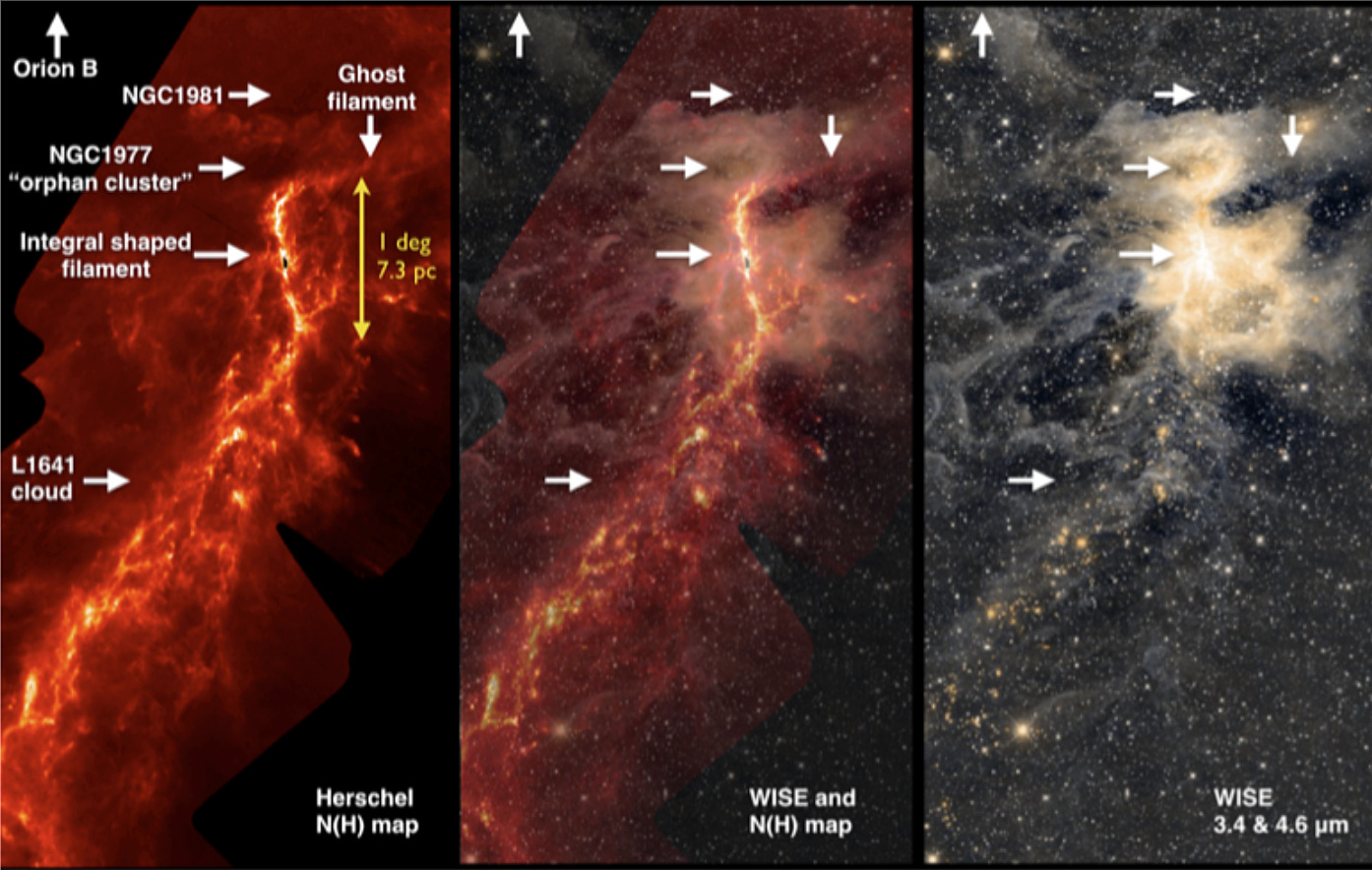 Birthplace of the stars: The integral-shaped filament, the two star clusters above the filament, and cloud L1641 in the south can be seen on these images of the OrionA star formation region. The picture on the left shows a density map compiled with data from ESA's Herschel Space Observatory, the one on the right an infrared image taken by NASA's Wide-field Infrared Survey Explorer (WISE). The photo in the centre is a combination of both images. Image credits: © A. M. Stutz / MPIA.