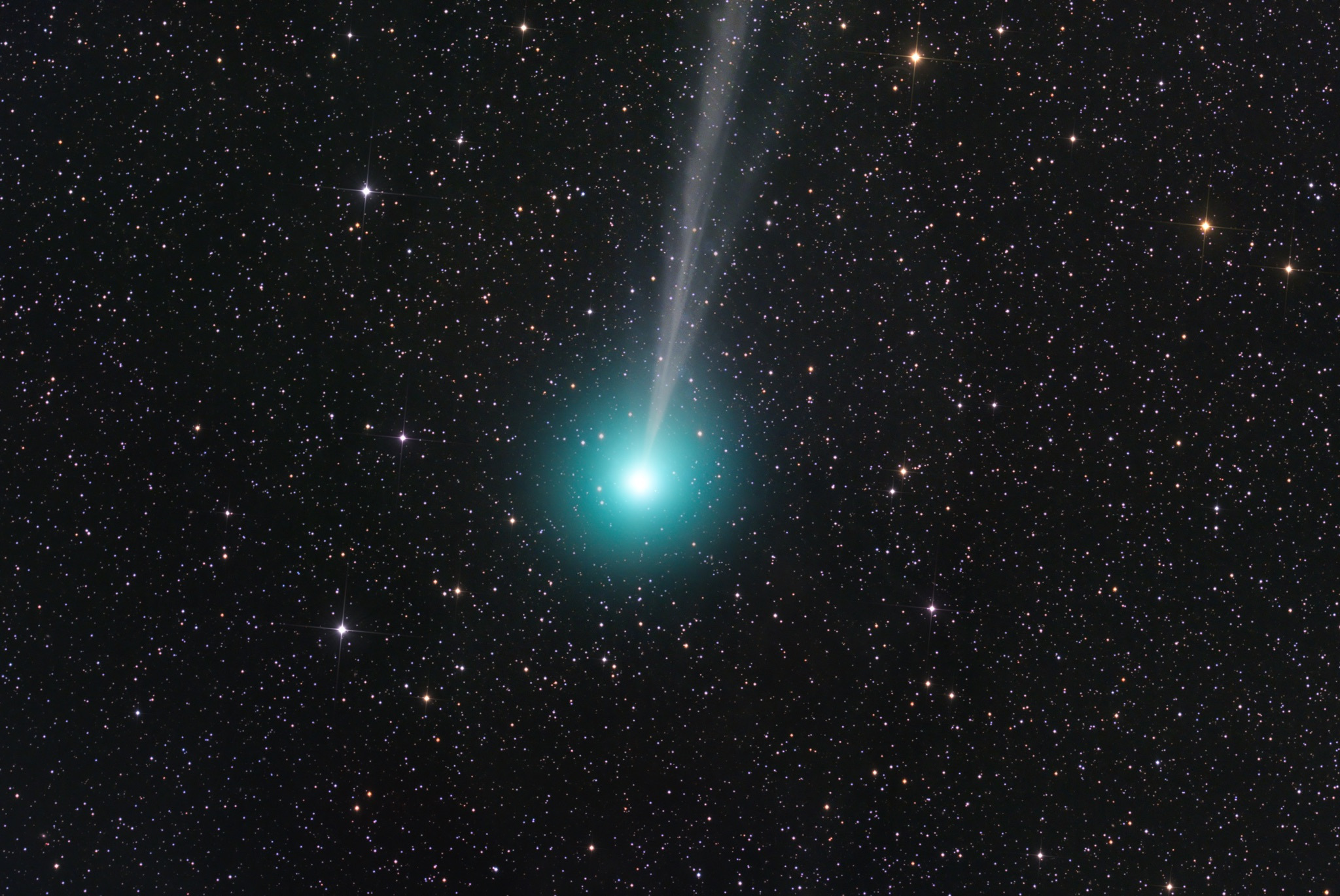 Jimmy Walker's ethereal image of Comet Lovejoy C/2014 Q2 was also captured with a FLI Microline 11002 CCD camera on the RASA, this time in 20 x two-minute exposures on a Bisque mount, also under New Mexico skies. Image credit: © Jimmy Walker, used with permission.