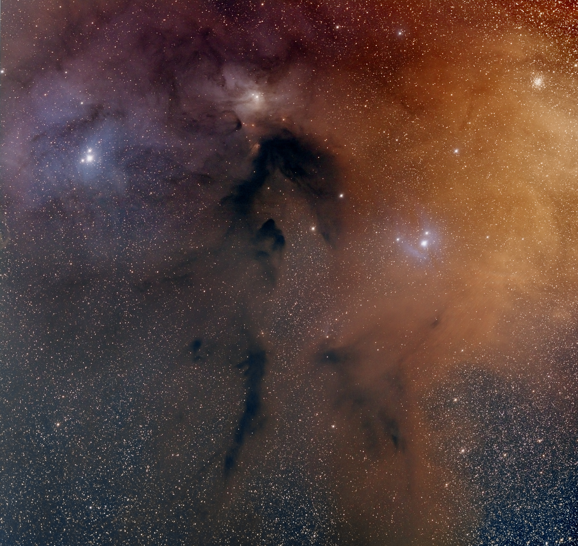 This is another image from Bryan Cogdell who once again used a full-frame QHY11 CCD camera for this two-panel mosaic of the Rho Ophiuchi region, where each panel was composed of 25 two-minute shots. The mount was a Celestron CGEM DX. Image credit: © Bryan Cogdell, used with permission.