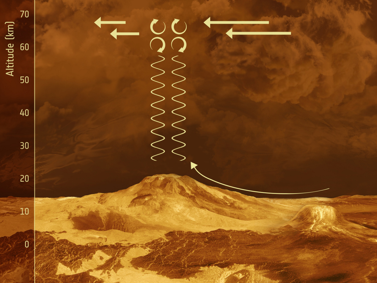 Schematic illustration of the proposed behaviour of gravity waves in the vicinity of mountainous terrain on Venus. Winds pushing their way slowly across the mountainous slopes on the surface generate gravity waves — an atmospheric phenomenon also often seen in mountainous parts of Earth's surface. These waves form when air ripples over bumpy surfaces. The waves then propagate vertically upwards, growing larger and larger in amplitude until they break just below the cloud-top, like sea waves on a shoreline. As the waves break, they push back against the fast-moving high-altitude winds and slow them down. The background is an artist's impression of the surface of Venus beneath the cloud tops. Illustration credit: ESA.