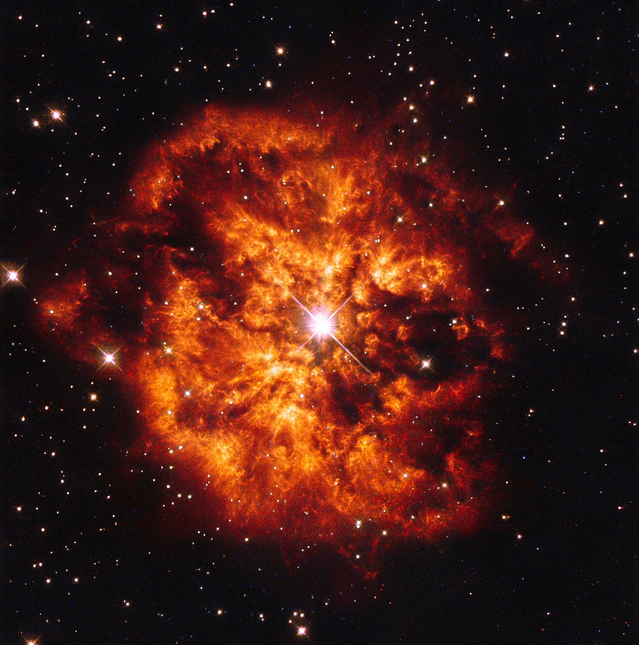 In this NASA/ESA Hubble Space Telescope image we see the central Wolf-Rayet star known as Hen2-427 — more commonly known as WR124 — surrounded by the nebula M1-67. Both objects are found in the constellation of Sagitta some 15,000 light-years away. The hot clumps of gas ejected by the star into space are travelling at over 150,000kilometres per hour. Image credit: ESA/Hubble & NASA. Acknowledgement: J. Schmidt.