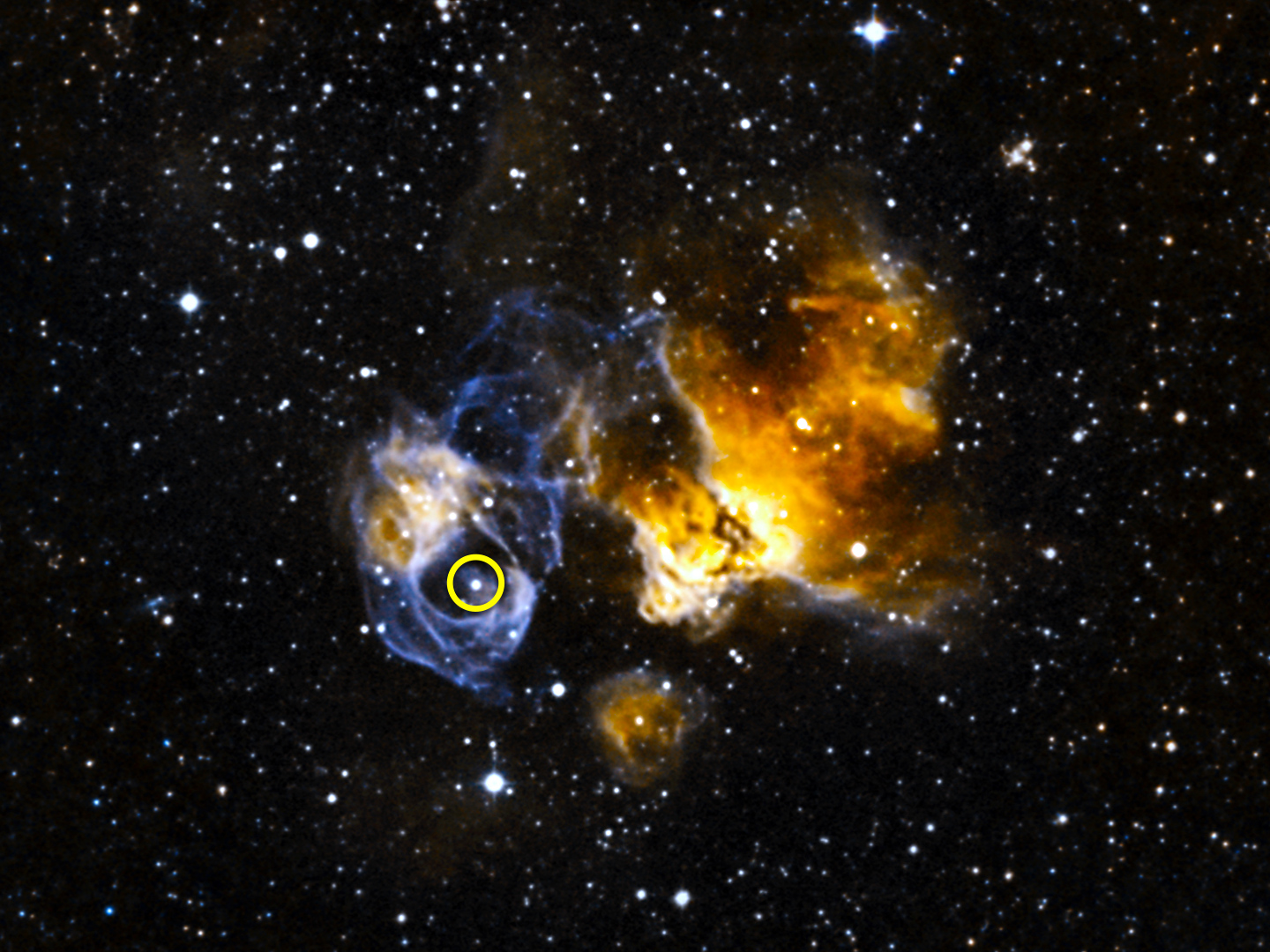 LMCP3 (circled) is located in a supernova remnant called DEML241 in the Large Magellanic Cloud (LMC), a small galaxy about 163,000 light-years away. The system is the first gamma-ray binary discovered in another galaxy and is the most luminous known in gamma rays, X-rays, radio waves and visible light. Image credit: NASA's Goddard Space Flight Center.