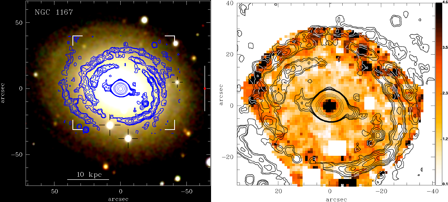 """Figure 1: True colour image of galaxy NGC1167, overlaid with contours depicting the spiral-like star-forming regions (left).  """"Intensity"""" of the Equivalent Width in H-alpha in galaxy NGC1167, overlaid with contours depicting the spiral-like star-forming regions (right). Illustration credits: Gomes et al. (2016)."""