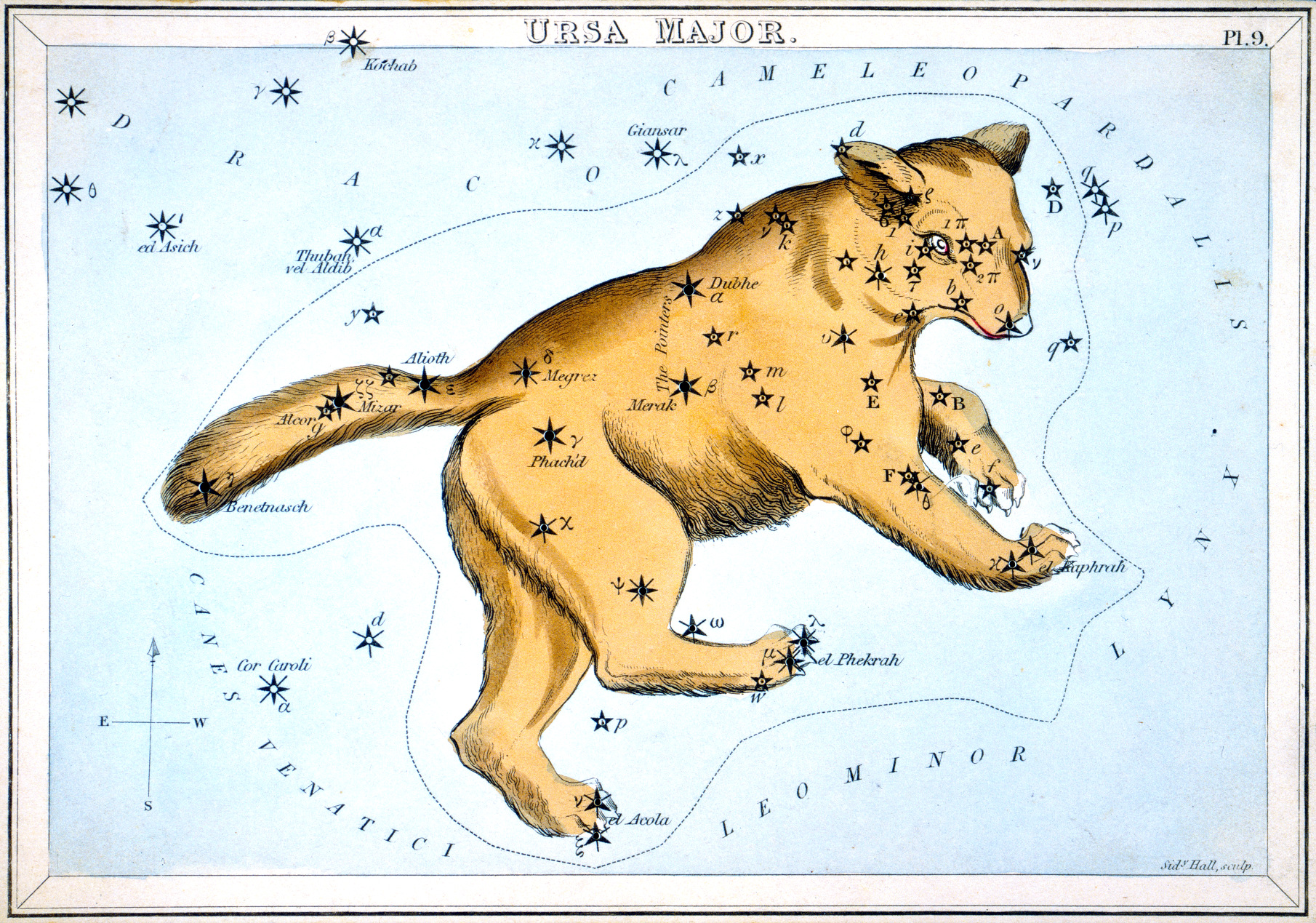 Ursa Major, the constellation of the Great Bear, from Urania's Mirror, a colourful set of constellation cards published by Samuel Leigh in England in 1824. Over the years, the star at the end of the tail has been known by two popular names, Alkaid and Benetnasch. On this card it is called Benetnasch, but the IAU Working Group on Star Names (WGSN) has chosen the more common alternative of Alkaid as its official name. Among the star names on this 1824 map of Ursa Major that are recognised by the IAU as official proper names are Alcor, Alioth, Dubhe, Megrez, Merak, and Mizar.  Other names on this map have been included in a growing database of cultural and historical names for stars, and some of these may eventually be adopted as official IAU names after further research and deliberation by the WGSN. Illustration credit: IAU.