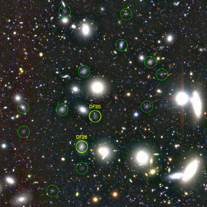 Using the 8.2-metre Subaru Telescope, astronomers have observed 854 ultra-diffuse galaxies in the Coma galaxy cluster. These galaxies are very far away — about 300million light-years and 332 of them are the size of the Milky Way. The yellow circles show two of the 47 Dragonfly galaxies, and green circles are the ones discovered by the Subaru Telescope. Image credit: NAOJ.