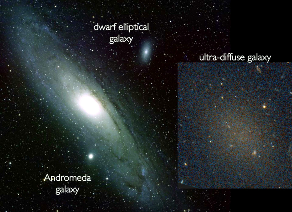 The ultra-diffuse faint galaxy, Dragonfly17 shown next to two other galaxies for comparison. The large spiral galaxy, the Andromeda Galaxy is shown on the left and the elliptical dwarf galaxy, NGC205 is shown higher up in the image, while the diffuse ultra-faint dwarf galaxy, Dragonfly17 can be seen to the right. Image credit: Schoening/Harvey/van Dokkum/NASA/ESA Hubble Space Telescope.