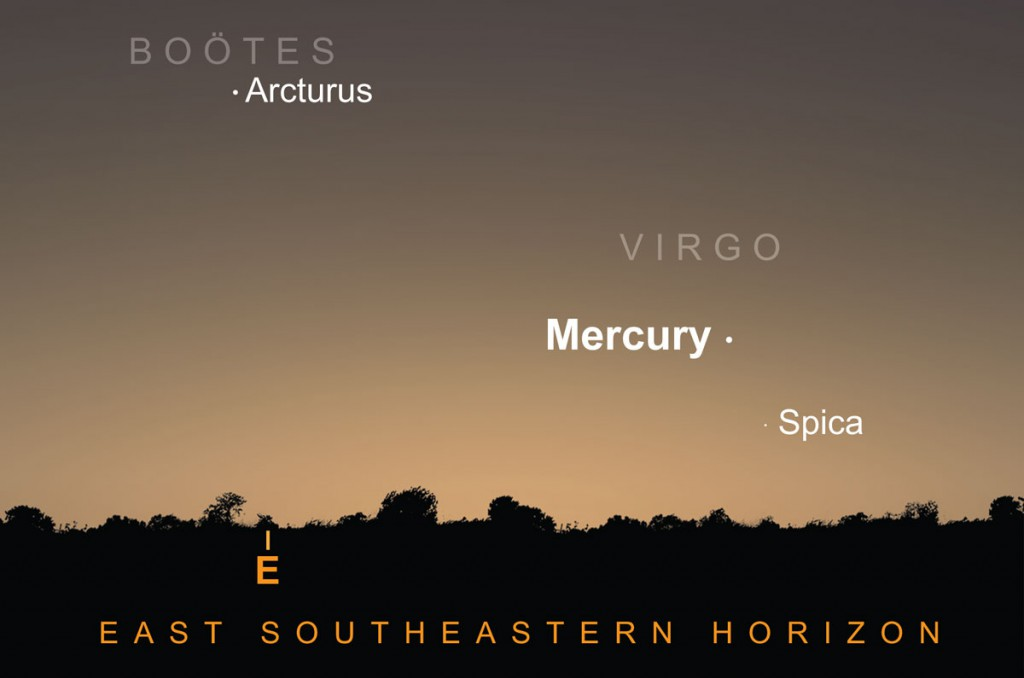 Mercury can be seen five degrees above first-magnitude Spica, luminary of the constellation Virgo. Mercury is 1.5 times brighter and given a clear east-south-east horizon the two should be visible through binoculars. AN graphic by Greg Smye-Rumsby.