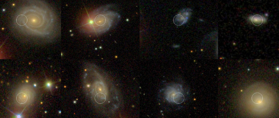 Type Ia supernovae, which occur when burnt-out stars called white dwarfs detonate, have been used for years to help measure the distances to galaxies and the acceleration of our universe. Using data from NASA's Galaxy Evolution Explorer, or GALEX, astronomers were able to show that a fraction of the Type Ia explosion sites they looked at are associated with hot young stars. The astronomers then went on to show that these particular explosions occurred in more consistent ways, and thus are better standard tools for cosmology. From left to right and top to bottom, the galaxies (and supernovae) are: NGC 6038 (SN 1999cc), UGC 5234 (SN 2003W), A112539+2249 (SN 2004as), A225942-0000 (SN 2005ku), M+05-54-41 (SN 2006en), UGC 14 (SN 2006sr), UGC 8162 (SN 2007F) and IC 807 (SN 2007cp). Image credit: SDSS