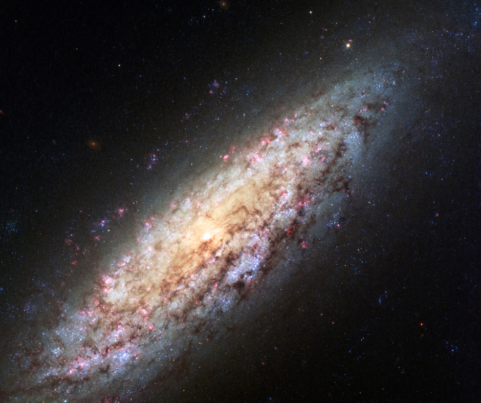 This NASA/ESA Hubble Space Telescope image shows NGC 6503. The galaxy, which lies about 18 million light-years away, is at the edge of a strangely empty patch of space called the Local Void. This new image shows a very rich set of colours, adding to the detail seen in previous images. Image credit: NASA, ESA.