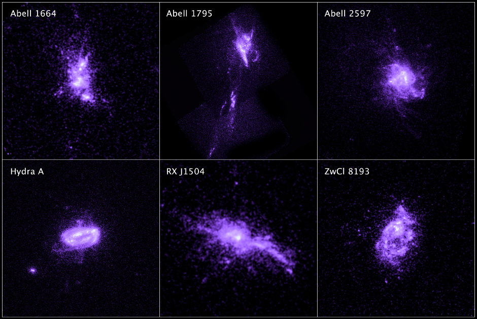 This sample of galaxies, as seen by Hubble, shows chains of star formation in ultraviolet light. This star formation in each galaxy is a product of the action of the jets from a central black hole that controls infalling gas from the galaxy's halo. Image credit: NASA, ESA, G. Tremblay (Yale University), and R. Mittal (Rochester Institute of Technology, and Max Planck Institute for Gravitational Physics).