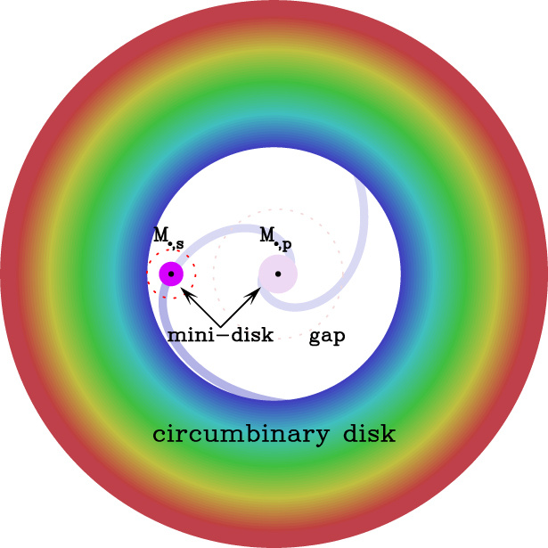 Proposed model of Mrk 231. Two supermassive black holes, each with their own mini-disc, orbit each other in the centre of a circumbinary disc. The secondary black hole has cleared gap in the circumbinary disc as a result of its orbit around the primary black hole. Image credit: Chang-Shuo Yan et al. 2015.
