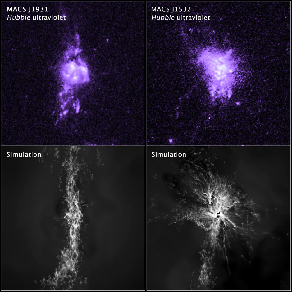In this comparison of actual observations with simulations, the top images show Hubble observations of the density of gas in the central portion of two galaxies. The bottom images are computer simulations that are remarkably similar to the Hubble observations. Knots of star formation in the two galaxies show how gas falling into a galaxy's centre is controlled by jets from the central black hole. Image credit: NASA, ESA, M. Donahue (Michigan State University), and Y. Li (University of Michigan).
