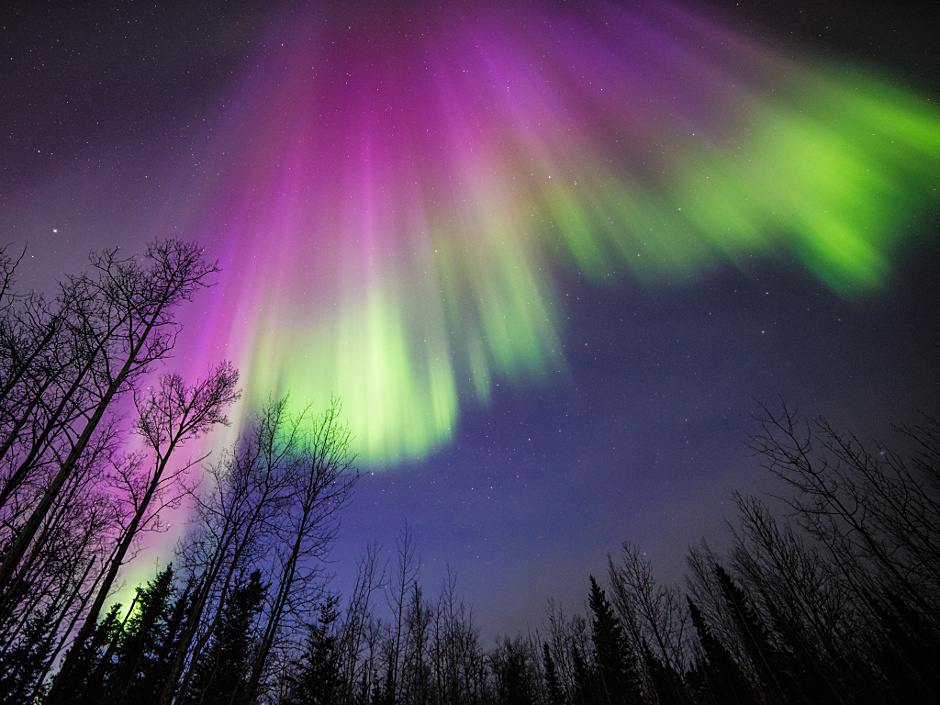 This image of a colourful aurora was taken in Delta Junction, Alaska, on 10 April 2015. All aurorae are created by energetic electrons, which rain down from Earth's magnetic bubble and interact with particles in the upper atmosphere to create glowing lights that stretch across the sky. Image courtesy of Sebastian Saarloos.