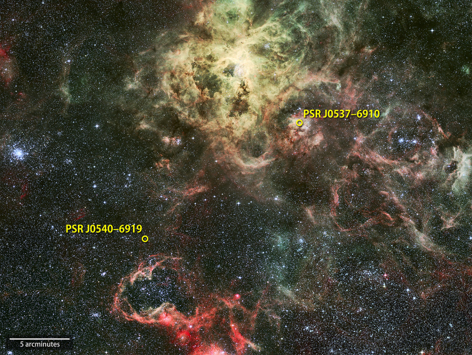 NASA's Fermi Gamma-ray Space Telescope has detected the first extragalactic gamma-ray pulsar, PSR J0540-6919, near the Tarantula Nebula (top centre) star-forming region in the Large Magellanic Cloud, a satellite galaxy that orbits our own Milky Way. Fermi detects a second pulsar (right) as well but not its pulses. PSR J0540-6919 now holds the record as the highest-luminosity gamma-ray pulsar. The angular distance between the pulsars corresponds to about half the apparent size of a full Moon. Background: An image of the Tarantula Nebula and its surroundings in visible light. Image credits: NASA's Goddard Space Flight Center; background: ESO/R. Fosbury (ST-ECF).