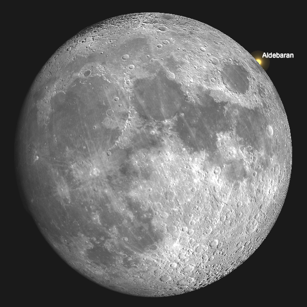 A computer simulation of the point on the Moon's bright limb, near the oval lunar sea known as the Mare Crisium, where Aldebaran will reappear after occultation shortly before 7:13pm GMT as seen from the centre of the British Isles. AN graphic by Ade Ashford / SkySafari Pro.