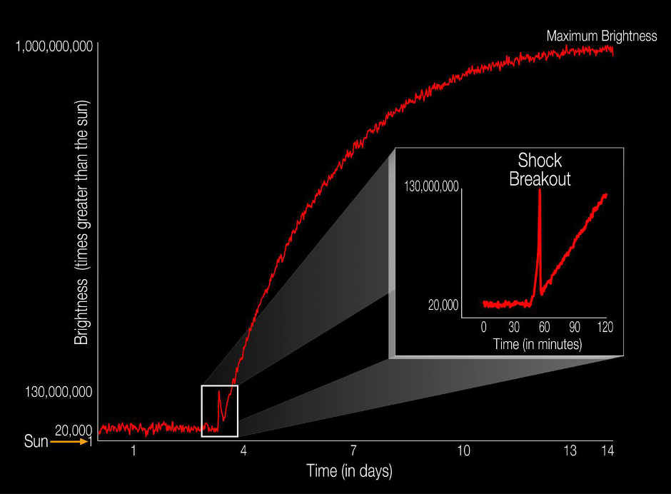 The diagram illustrates the brightness of a supernova event relative to the Sun as the supernova unfolds over time. For the first time, a supernova shock wave, or shock breakout, has been observed in visible light wavelengths as it reached the surface of the star from deep within the star's core. The explosive death of this star, called KSN 2011d, reached its maximum brightness in about 14 days. The shock breakout itself lasted only about 20 minutes (see inset). Illustration credit: NASA Ames/W. Stenzel.