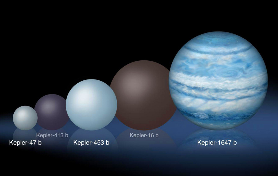 Comparison of the relative sizes of several circumbinary planets. With a mass 1.06 times that of Jupiter and a diameter 1.52 times that of the solar system's largest gas giant, Kepler-1647b is substantially larger than any of the previously known circumbinary planets. Image credit: Lynette Cook.