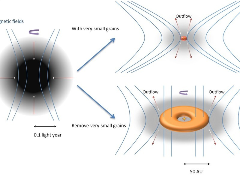 The collapse of a rotating molecular cloud leads to the formation of a large rotationally supported disc if very small grains are removed. The strong magnetic braking in the presence of very small grains suppresses the formation of such a disc. Illustration credit: MPE.