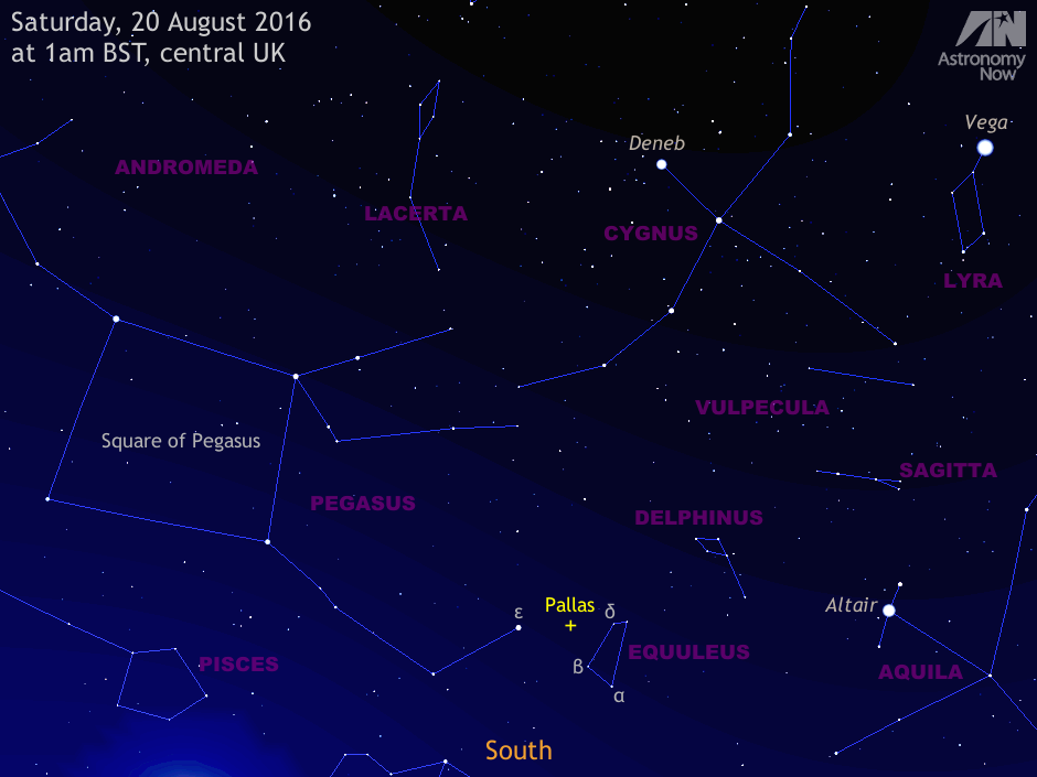 This wide-angle view of asteroid 2Pallas' position at opposition shows the sky high to the south around 1amBST on Saturday, 20August as seen from the centre of the BritishIsles. For scale, the view is about 80degrees wide, or four times the span of an outstretched hand at arm's length. The small triangle of epsilon (ε) Pegasi, delta (δ) Equulei and beta (β) Equulei surrounding Pallas can just be encompassed by wide-angle 7x binoculars. The glow in the lower left-hand corner comes from the 16-day-old waxing gibbous Moon just out of shot. Moonlight will sadly interfere with binocular observations of Pallas for observers in Western Europe until around 27August. AN Illustration by AdeAshford.