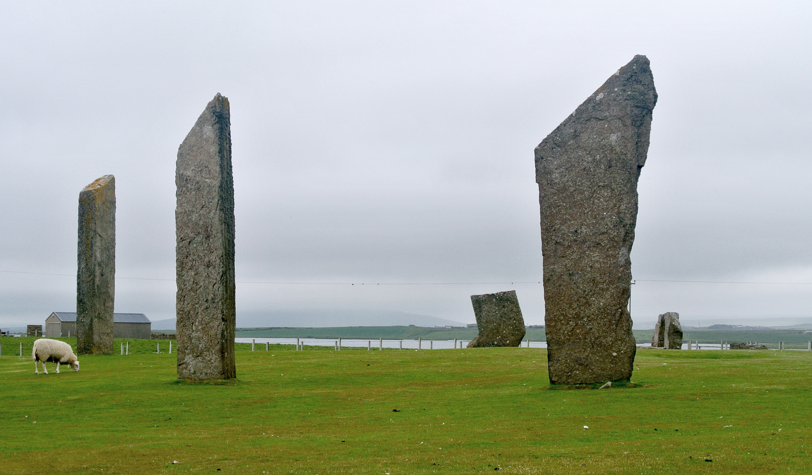 The circle of the Stones of Stenness is 32.2 x 30.6metres (106 x 100feet). Its earthen henge is 45metres (148feet) in diameter, over 7metres (23feet) wide and over 2metres (6.5feet) deep and the circumference is 141.37metres (464feet). Image credit: Wikimedia Commons.