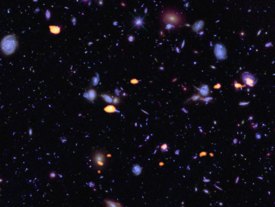 A trove of galaxies, rich in carbon monoxide (indicating star-forming potential) were imaged by ALMA (orange) in the Hubble Ultra Deep Field. The blue features are galaxies imaged by Hubble. Image credit: B. Saxton/NRAO/AUI/NSF/ALMA/ESO/NAOJ/NASA/ESA/Hubble.
