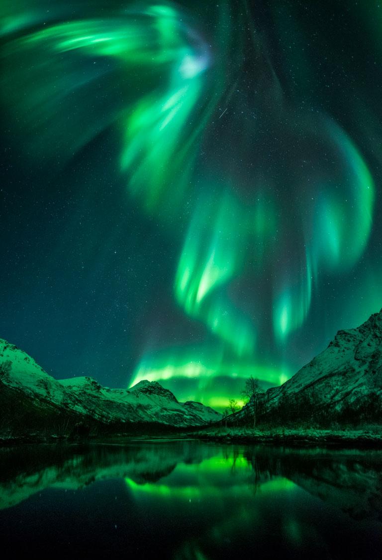 aurora-bird-by-jan-r-olsen-768