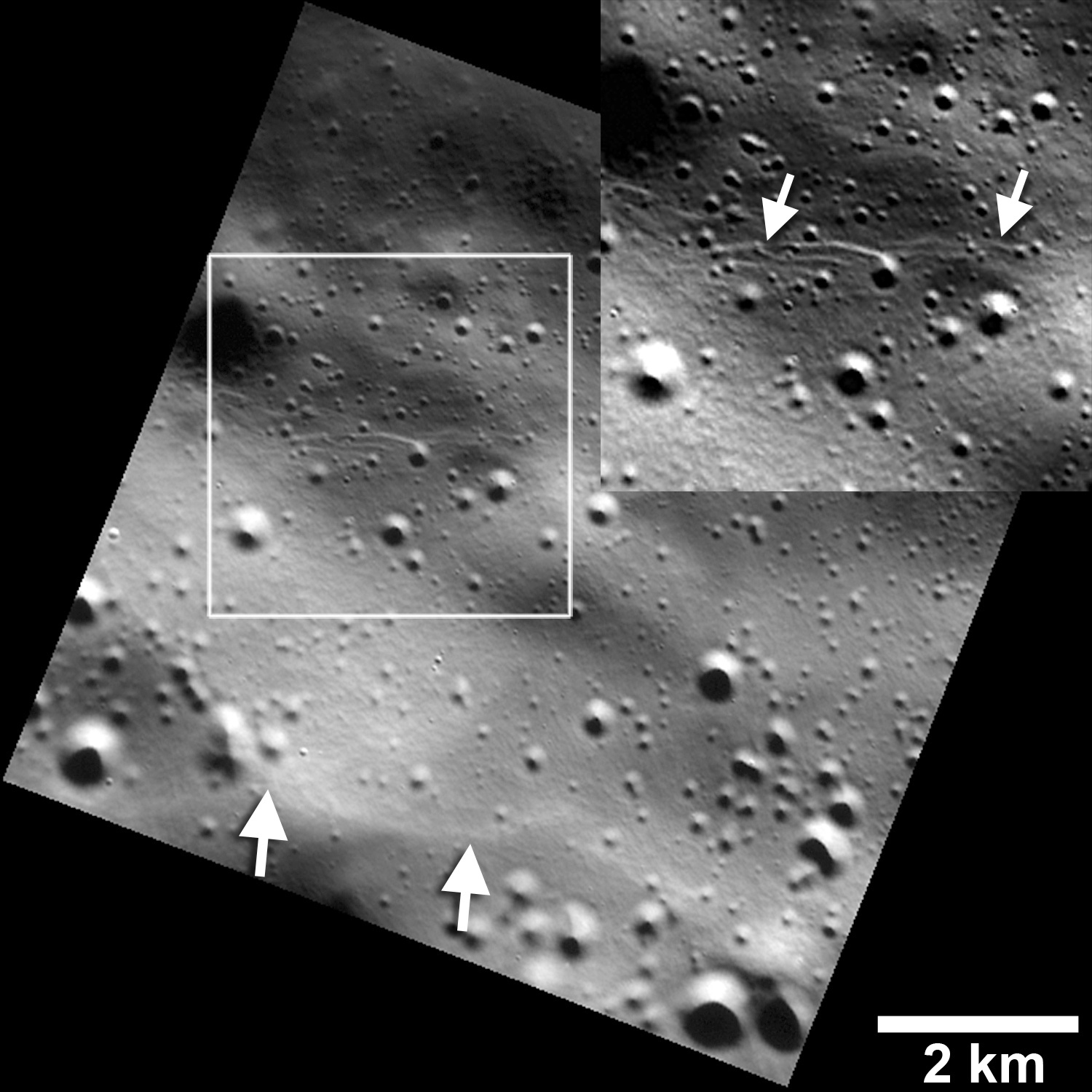 Small graben, or narrow linear troughs, have been found associated with small fault scarps (lower white arrows) on Mercury, and on Earth's Moon. The small troughs, only tens of metres wide (inset box and upper white arrows), likely resulted from the bending of the crust as it was uplifted, and must be very young to survive continuous meteoroid bombardment. Image credits: NASA/JHUAPL/Carnegie Institution of Washington/Smithsonian Institution.
