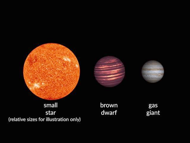 An illustration showing the relative sizes of brown dwarfs as compared to stars and gas giant planets. Illustration credit: Carnegie Institution for Science.