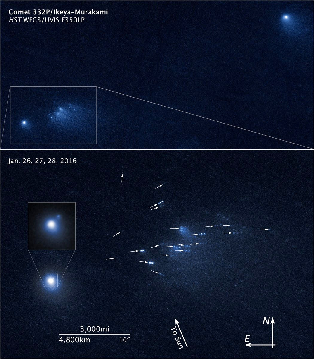 These NASA/ESA Hubble Space Telescope images show the migration of building-sized chunks of comet 332P/Ikeya-Murakami. The comet is disintegrating as it approaches the Sun. The image at the top shows the main nucleus of comet 332P at the lower left together with a wayward cloud of pieces of the comet which broke off between October and December 2015. Hubble spied the debris in January 2016. The object at the upper right results from an earlier split that probably occurred in 2012. The image at the bottom was made from multiple exposures taken over three days, 26-28 January 2016, with Hubble's Wide Field Camera 3. Arrows show the direction of the slowly moving comet pieces. Image credit: NASA, ESA and David Jewitt/UCLA.