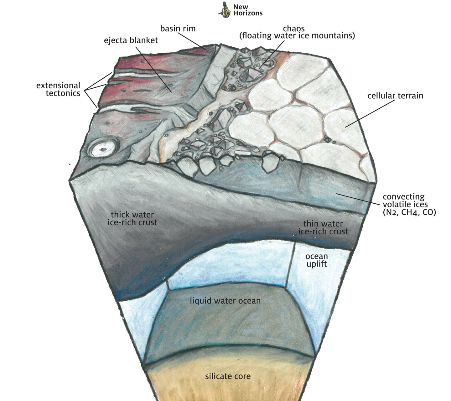 The geologic structure beneath the surface of Sputnik Planitia, which is believed to be an ancient impact basin that has since filled in with volatile ices. On Pluto, it is possible that the thinned crust is overlying a liquid water ocean. Click image for a larger-scale version. Illustration credit: James Keane.
